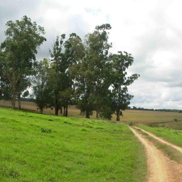 Farm Hikes, Jogging and Mountain Biking
